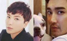 โพสต์เก่าของอีทึก Super Junior กลับมาได้รับความสนใจอีกครั้ง หลังจากเกิดเหตุการณ์สุนัขของชีวอนกัดคน!