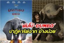 ดัมโบ้-DUMBO ปาฏิหาริย์จากช้างน้อย เรียนรู้และเติบโต ความประทับใจที่ผู้ใหญ่ควรดู