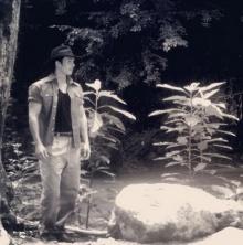 ตัวอยางแรก เพลิงฉิมพลี อั้ม ประกบเบลล่า