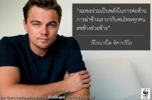 คนไทยปลื้ม ลีโอนาร์โด ทวีตรณรงค์ ไม่ค้างาช้าง!!