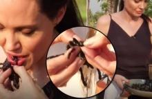 ขนคอลุกชัน!! โจลี่ พาลูกๆกินแมงป่อง! ขณะเที่ยว กัมพูชา (คลิป)