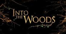 ว้าว! โปสเตอร์เซ็ทใหม่จาก Into the Woods
