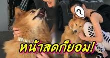 ยอมใจแม่! อั้ม พัชราภา ยอมโชว์หน้าสด หลังน้องหมาสุดที่รักทำแบบนี้จนเป็นรอยไปหมด!?