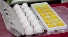 เมื่อเรานำไข่ไก่ ใส่ช่องน้ำแข็ง แล้วฟรีชไว้ จะเกิดอะไรขึ้น มาดูกัน