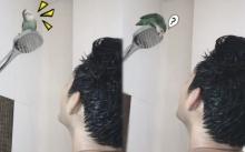 เมื่อ ตู่ ภพธร โชว์อาบน้ำกับนก แต่คนไม่ได้โฟกัสที่นกเลยสักนิด!! (มีคลิป)