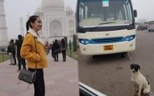 แอน ไปอินเดีย เจอหมาแม่ลูกอ่อน เดินนมย้อยหาของกินด้วยหิวโหย และนี่คือสิ่งที่เธอทำ!