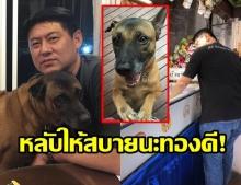 สรยุทธ เศร้า สูญเสียทองดีสุนัขแสนรัก สุดผูกพันเลี้ยงมาตั้งแต่เล็ก