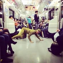 จะฮาไปไหน? แจ๊ส ชวนชื่น แปลงร่างเป็นเสือดาว กลางประเทศญี่ปุ่น...