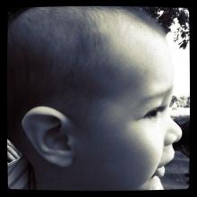 ภาพน้องฮาร์เปอร์ลูกชาย ฮิวโก้!!