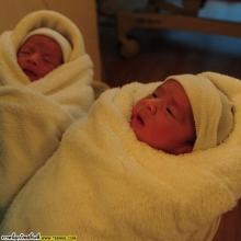 ดูกันชัดๆ น้องบรู๊คลิน-บีนา ลูกแฝดของนานา-เวย์