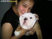 Pic : นาตาลี กับน้องหมาสุดเลิฟ!!